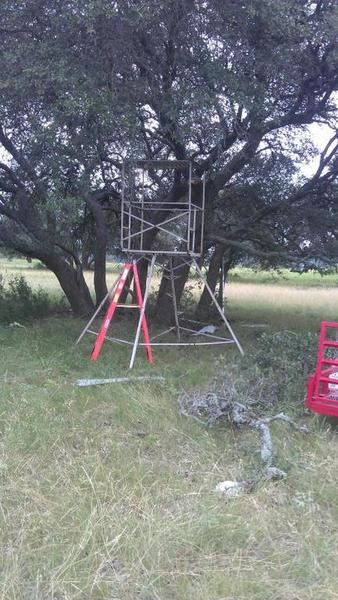 New Deer Stand Covering Photos Texas Hunting Forum
