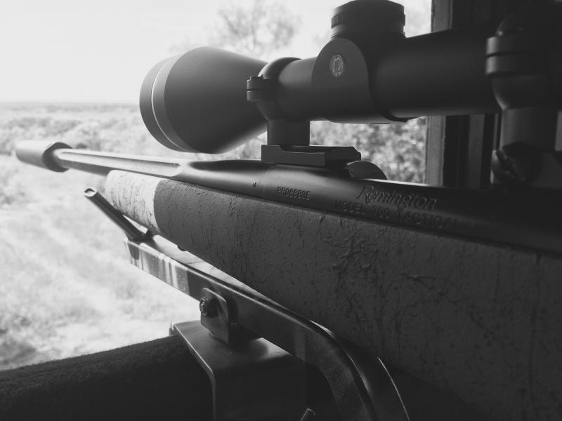 What are you going to use this year? - Texas Hunting Forum