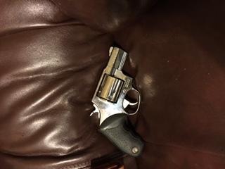 Taurus 44 Special model 445 Polished - Texas Hunting Forum