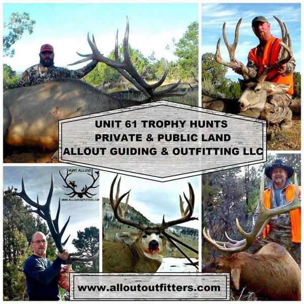 Colorado unit 61 trophy elk hunts - Texas Hunting Forum
