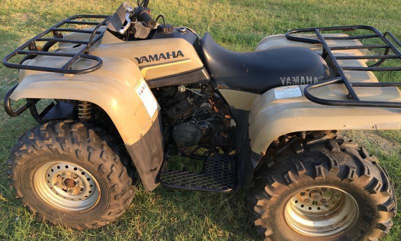 Yamaha Big Bear  Does It Have A Reverse