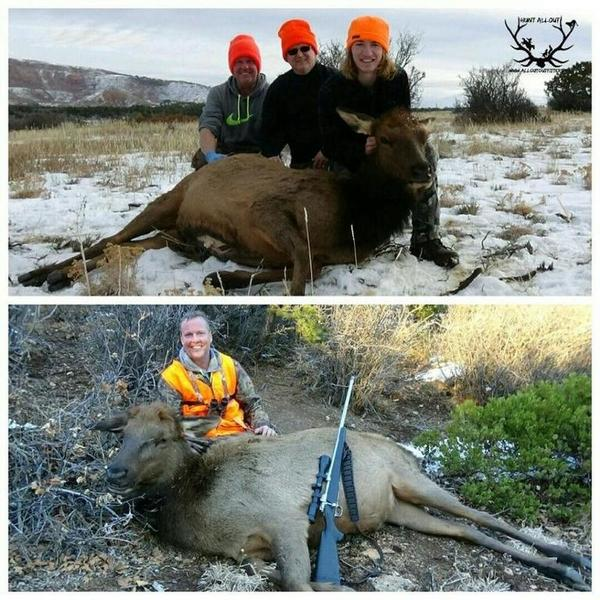 Colorado cow elk hunt outfitters guides texas for How much does a fishing license cost in texas