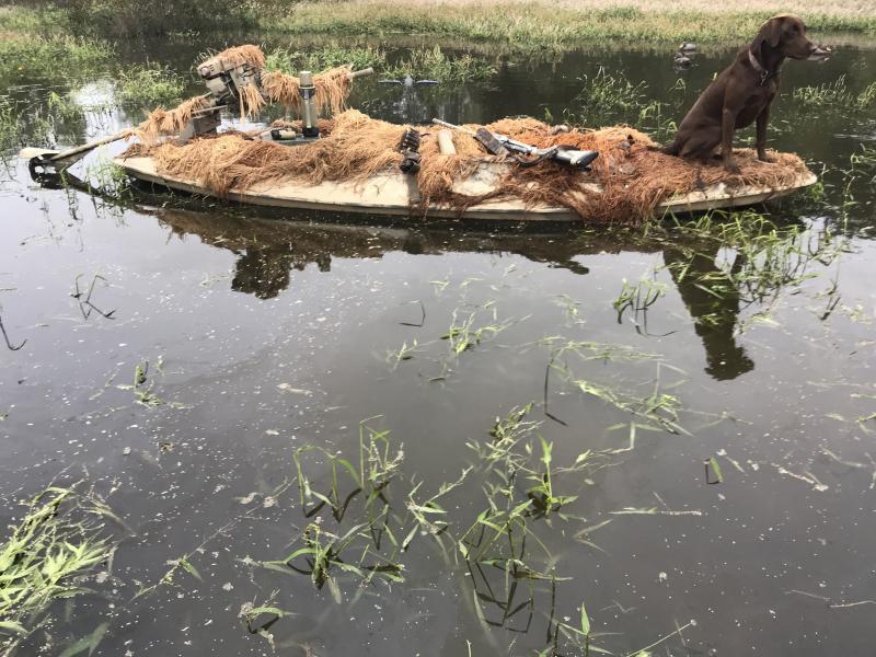 canoe/kayak for duck hunting    - Texas Hunting Forum