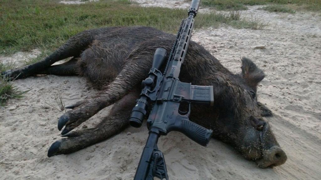 WILSON COMBAT 300 HAM'R - Texas Hunting Forum
