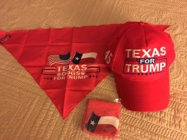 Texas for Trump.jpg